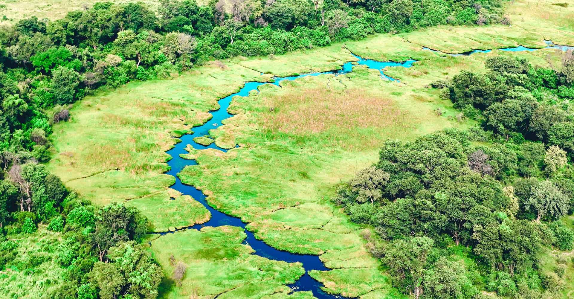 Banner image of Botswana