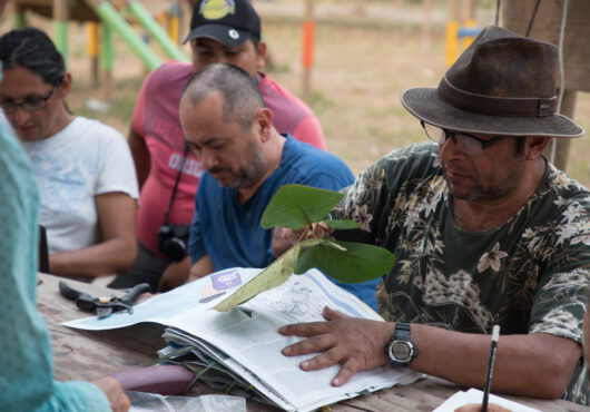 Researchers undertaking biodiversity research in Colombia