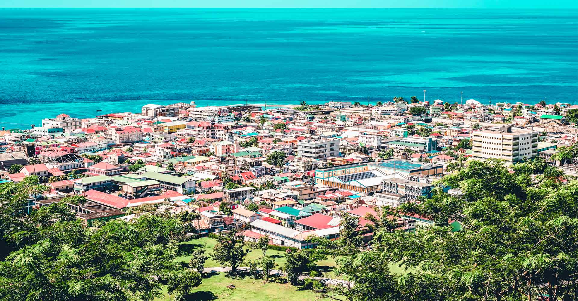 Banner image of Dominica