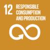 SDG 12 icon