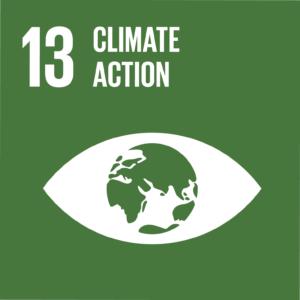SDG 13 climate change icon
