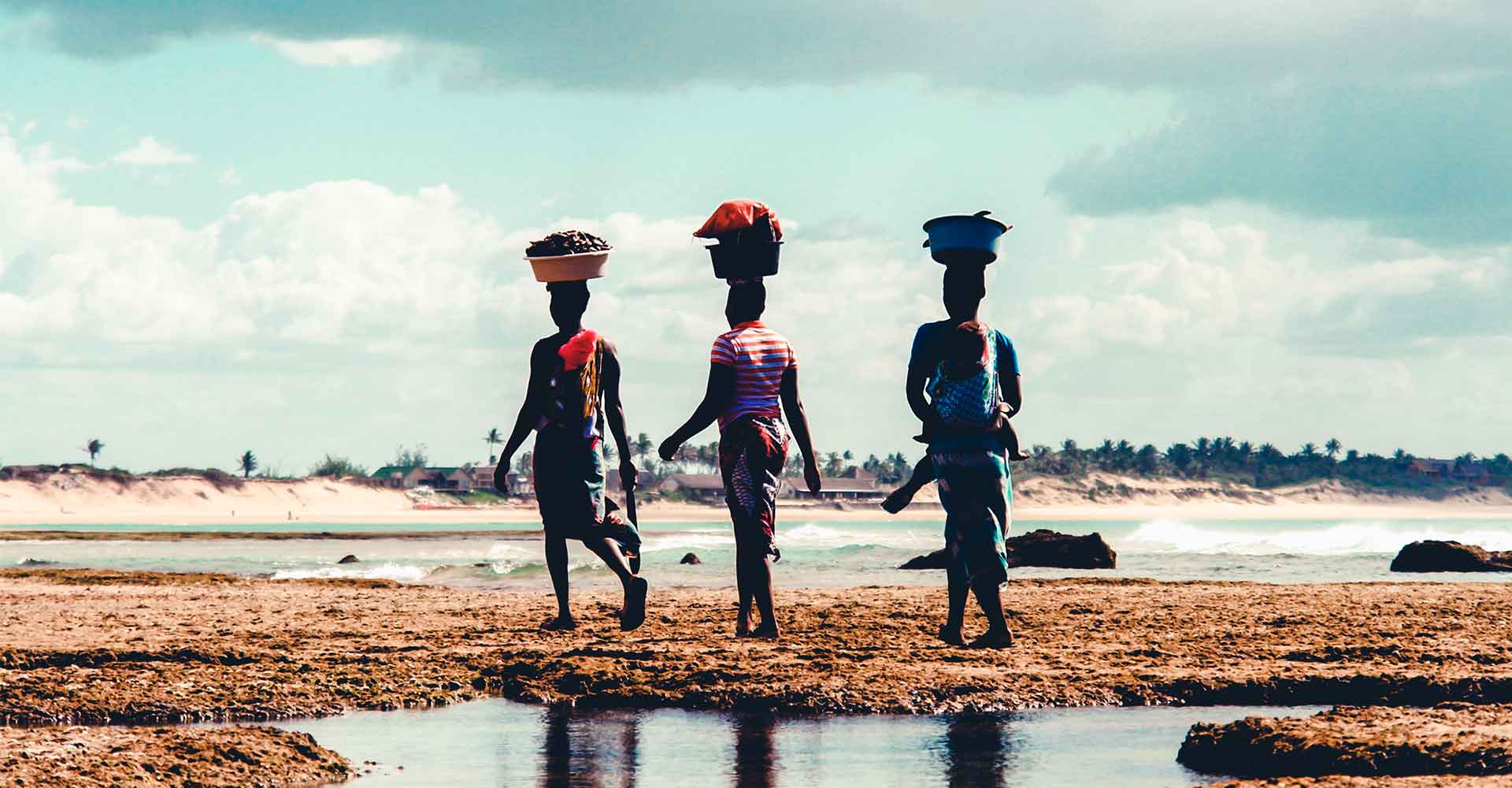 Banner image of Mozambique