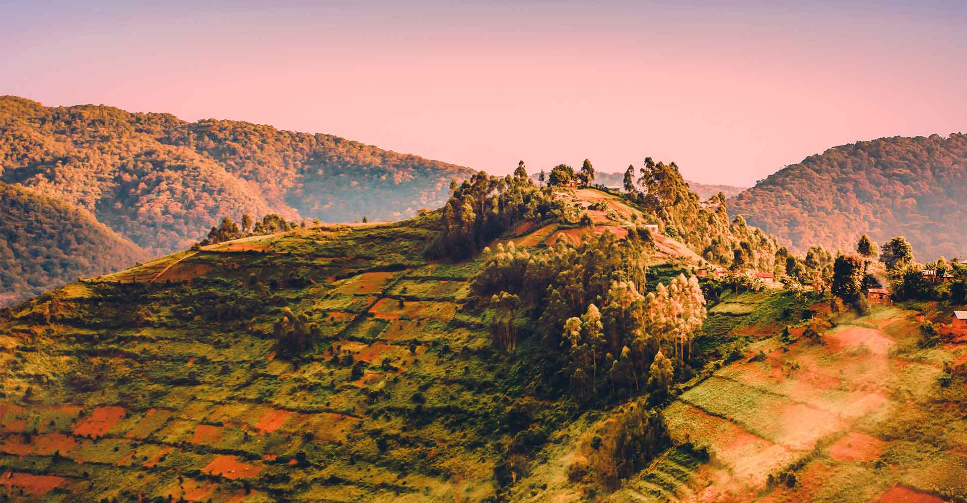 Banner image of Rwanda