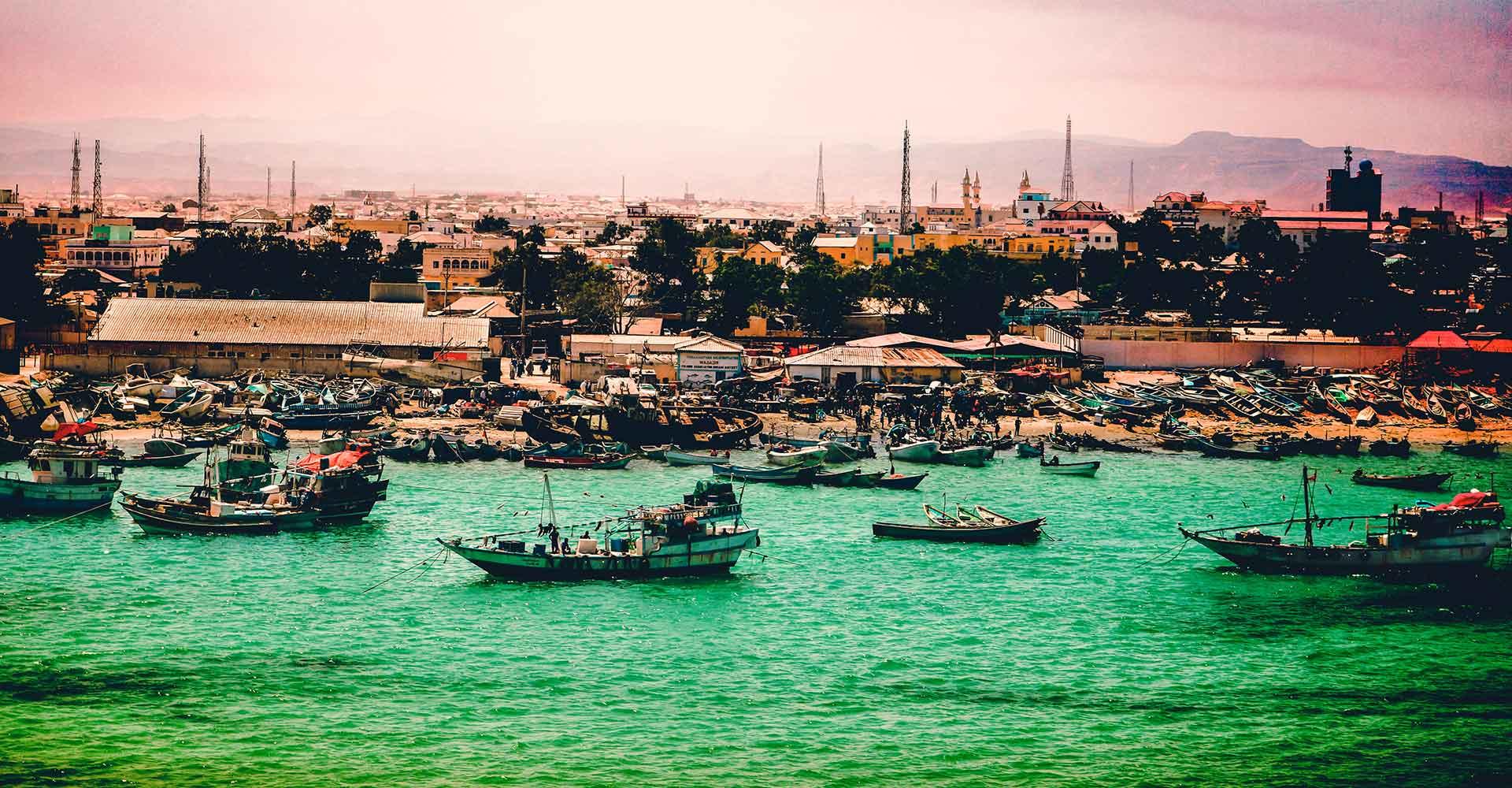 Banner image of Somalia