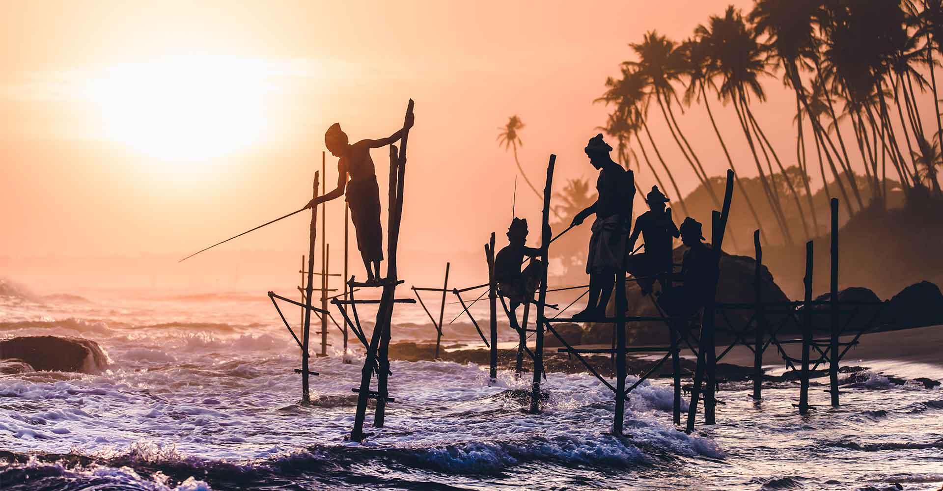 Banner image of Sri Lanka