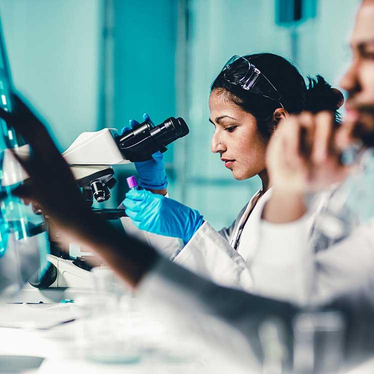 Newton Fund and GCRF laboratory imageNewton Fund and GCRF laboratory image