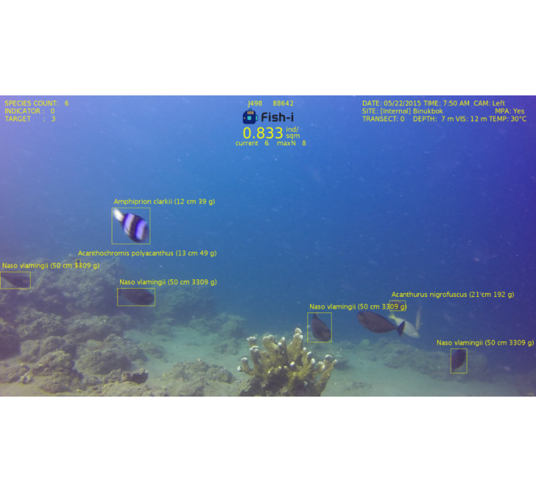 v2 Screenshot of Fish-i software gathering fish data from recorded underwater video